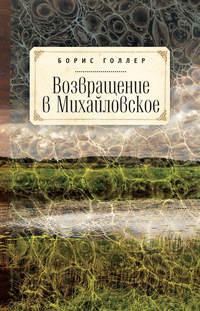 Книга Возвращение в Михайловское - Автор Борис Голлер