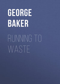 Купить книгу Running To Waste, автора