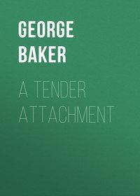Купить книгу A Tender Attachment, автора