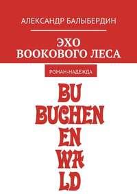 Купить книгу Эхо Bookового леса. Роман-надежда, автора Александра Геннадьевича Балыбердина