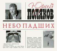 Купить книгу Небо падших, автора Юрия Полякова