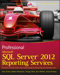 Книга Professional Microsoft SQL Server 2012 Reporting Services - Автор Paul Turley