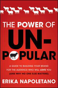 The Power of Unpopular. A Guide to Building Your Brand for the Audience Who Will Love You (and why no one else matters)