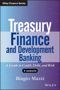 Treasury Finance and Development Banking. A Guide to Credit, Debt, and Risk