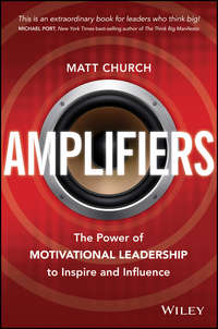 Amplifiers. The Power of Motivational Leadership to Inspire and Influence