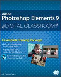 Книга Photoshop Elements 9 Digital Classroom - Автор AGI Team
