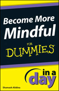 Книга Become More Mindful In A Day For Dummies - Автор Shamash Alidina