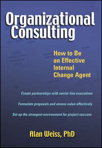 Organizational Consulting. How to Be an Effective Internal Change Agent