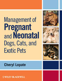 Книга Management of Pregnant and Neonatal Dogs, Cats, and Exotic Pets - Автор Cheryl Lopate