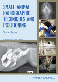 Книга Small Animal Radiographic Techniques and Positioning - Автор Susie Ayers