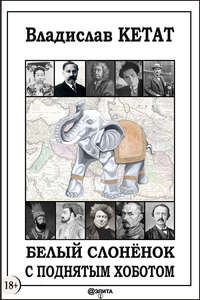Книга Белый слонёнок с поднятым хоботом - Автор Владислав Кетат