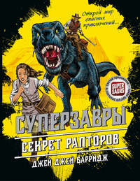 Купить книгу Секрет рапторов, автора Джея Джея Барриджа