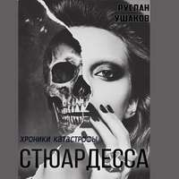 Купить книгу Стюардесса. Хроники катастрофы, автора Руслана Ушакова