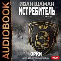 Купить книгу Истребитель 2: Орки, автора Ивана Шамана