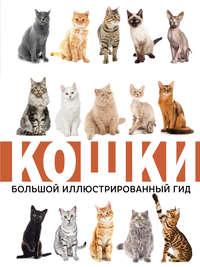 Купить книгу Кошки, автора Николая Непомнящего