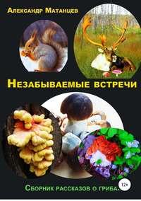 Купить книгу Незабываемые встречи. Сборник рассказов о грибах, автора Александра Матанцева