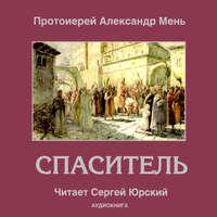 Купить книгу Спаситель, автора протоиерея Александр Мень