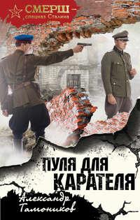 Купить книгу Пуля для карателя, автора Александра Тамоникова