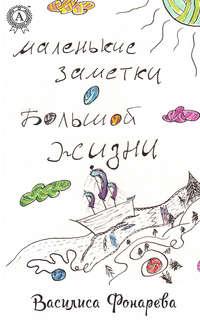 Купить книгу Маленькие заметки о большой жизни, автора Василисы Фонаревой
