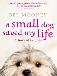 Купить книгу A Small Dog Saved My Life, автора Bel  Mooney