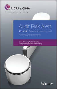 Купить книгу Audit Risk Alert: General Accounting and Auditing Developments 2018/19, автора