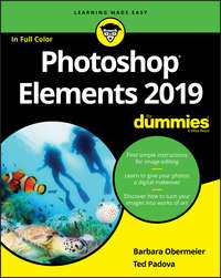 Купить книгу Photoshop Elements 2019 For Dummies, автора Barbara  Obermeier