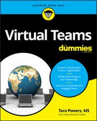 Купить книгу Virtual Teams For Dummies, автора