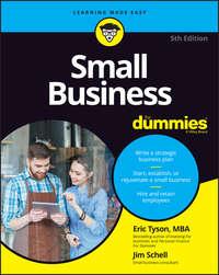 Купить книгу Small Business For Dummies, автора Jim  Schell