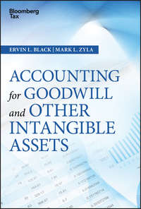 Купить книгу Accounting for Goodwill and Other Intangible Assets, автора