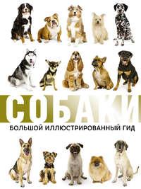 Купить книгу Собаки. Большой иллюстрированный гид, автора Любови Вайткене