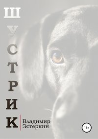 Купить книгу Шустрик, автора Владимира Григорьевича Эстеркина