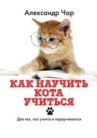 Купить книгу Как научить кота учиться. Для тех, кто учится и переучивается, автора Александра Чара