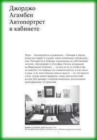 Купить книгу Автопортрет в кабинете, автора