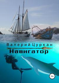 Купить книгу Навигатор, автора Валерия Цуркана