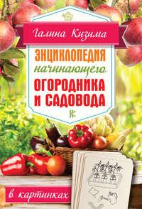 Купить книгу Энциклопедия начинающего огородника и садовода в картинках, автора Галины Кизимы