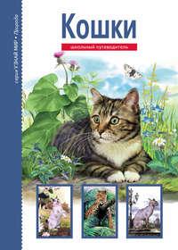 Купить книгу Кошки, автора Сергея Афонькина