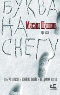 Купить книгу Буква на снегу, автора Михаила Шишкина