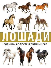 Купить книгу Лошади, автора Анны Спектор