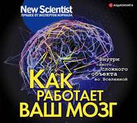 Купить книгу Как работает ваш мозг, автора Сборника