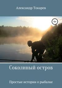 Купить книгу Соколиный остров, автора Александра Владимировича Токарева