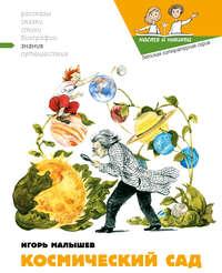 Купить книгу Космический сад, автора Игоря Малышева