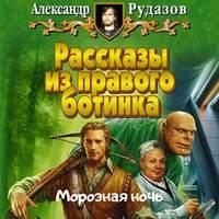 Купить книгу Морозная ночь, автора Александра Рудазова